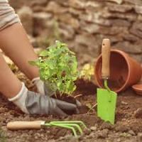 Comment jardiner sans se faire mal au dos: les conseils d'Elsa et Johann